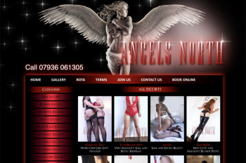 Blog image for Welcome To The New Angels North Website